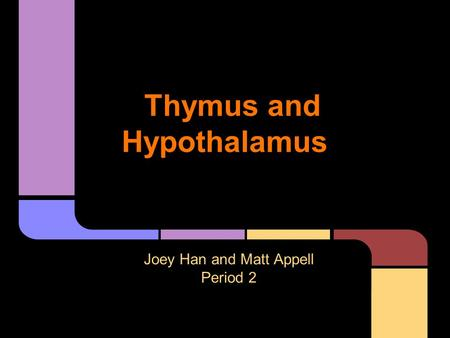 Thymus and Hypothalamus Joey Han and Matt Appell Period 2.