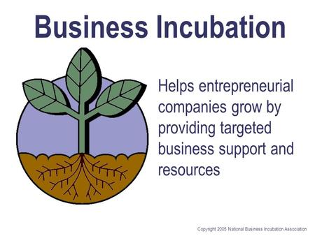 Copyright 2005 National Business Incubation Association Helps entrepreneurial companies grow by providing targeted business support and resources Business.