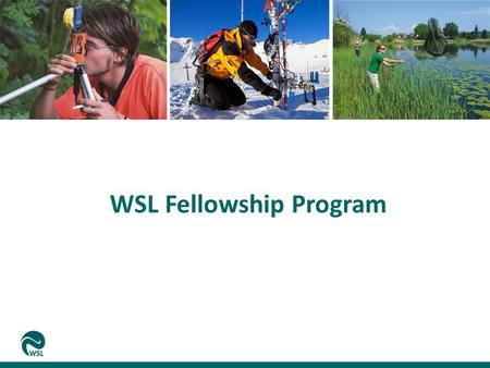 WSL Fellowship Program. Relevance of Science for WSL Opportunities for Science at WSL The WSL Fellowship Program Discussion Eidg. Forschungsanstalt für.