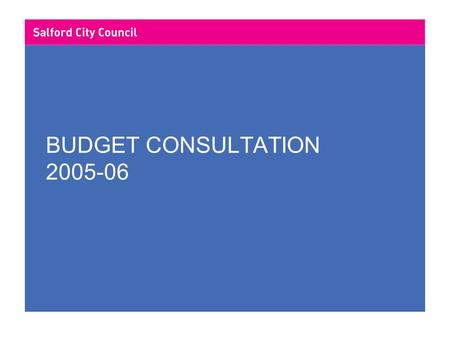 BUDGET CONSULTATION 2005-06. LOCAL GOVERNMENT FINANCE CONTENTS 2004/05 Revenue Budget Analysis Council Tax Future Developments in Local Government Finance.