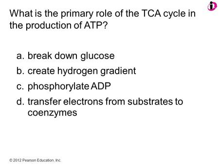 © 2012 Pearson Education, Inc. What is the primary role of the TCA cycle in the production of ATP? a.break down glucose b.create hydrogen gradient c.phosphorylate.
