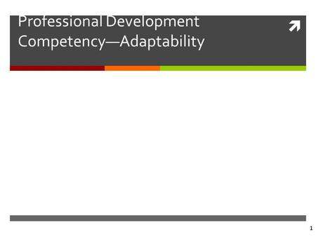  1 Professional Development Competency—Adaptability.