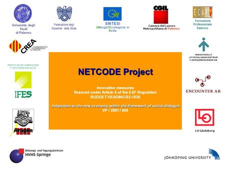 NETCODE Project Innovative measures financed under Article 6 of the ESF Regulation BUDGET HEADING B2-1630 Adaptation to the new economy within the framework.