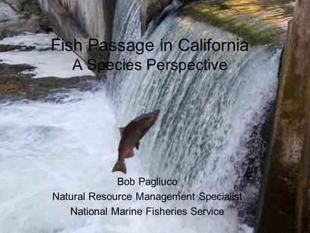 Fish Passage in California A Species Perspective Bob Pagliuco Natural Resource Management Specialist National Marine Fisheries Service.