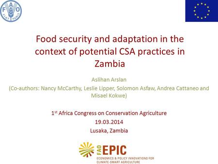 Aslihan Arslan (Co-authors: Nancy McCarthy, Leslie Lipper, Solomon Asfaw, Andrea Cattaneo and Misael Kokwe) 1 st Africa Congress on Conservation Agriculture.
