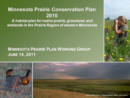 Photo credits, © Ivan C. Getting, Harold E. Malde, TNC Archives Minnesota Prairie Conservation Plan 2010 A habitat plan for native prairie, grassland,