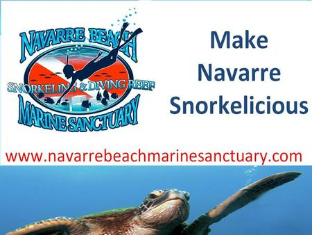 History of Sanctuary  Began in 1999  2003 – Director of Florida Park Service revoked promise to build marine sanctuary  2004 – Navarre Beach Park completed.