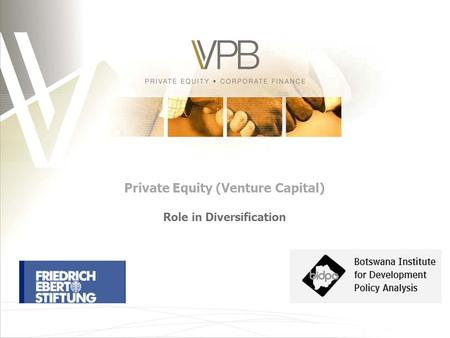 Private Equity (Venture Capital) Role in Diversification.