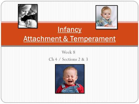 Infancy Attachment & Temperament