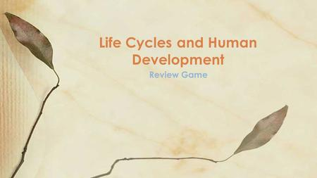 Review Game Life Cycles and Human Development. Question 1 What is a fertilized egg called?