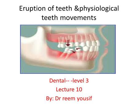 Eruption of teeth &physiological teeth movements Dental-- -level 3 Lecture 10 By: Dr reem yousif.