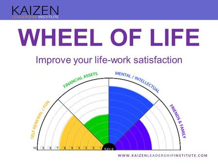 WHEEL OF LIFE Improve your life-work satisfaction.