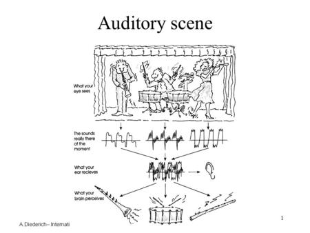 A.Diederich– International University Bremen – USC – MMM – Spring 2005 1 Auditory scene.