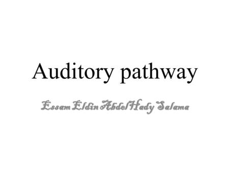 Auditory pathway Essam Eldin AbdelHady Salama. The vestibulocochlear nerve It is a sensory nerve conveys impulses from the inner ear, it has two component.