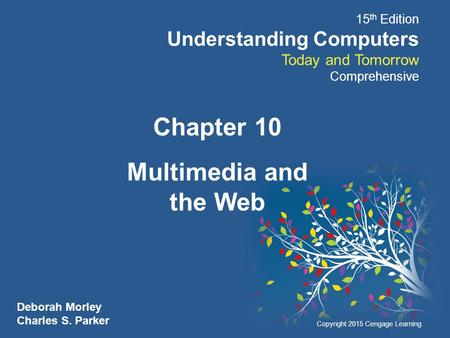 Chapter 10 Multimedia and the Web.