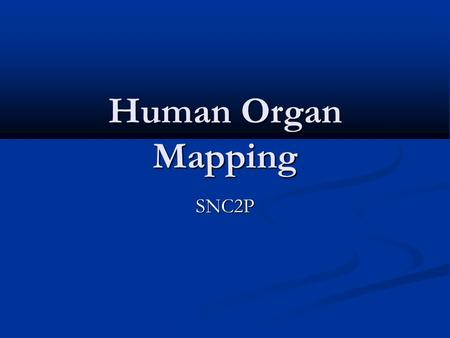 Human Organ Mapping SNC2P. Human Organs The human body is made up of many organs that work together to accomplish all of the tasks required in a healthy.
