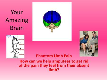 Your Amazing Brain Phantom Limb Pain How can we help amputees to get rid of the pain they feel from their absent limb?
