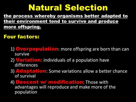 Natural Selection Four factors: