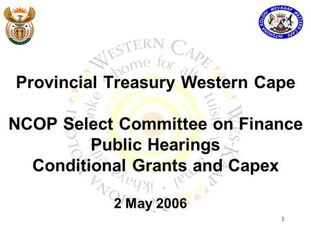 1 Provincial Treasury Western Cape NCOP Select Committee on Finance Public Hearings Conditional Grants and Capex 2 May 2006.