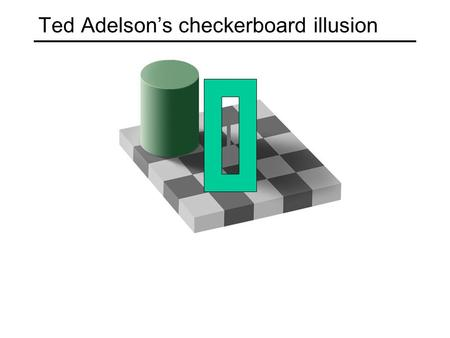 Ted Adelson's checkerboard illusion. Motion illusion, rotating snakes.