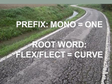 Prefix: Mono = one root word: flex/flect = curve