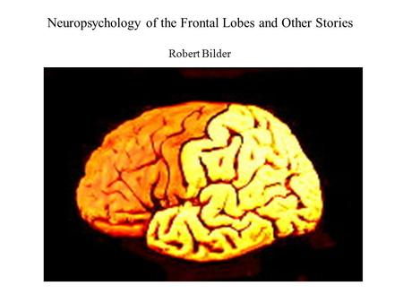 Neuropsychology of the Frontal Lobes <strong>and</strong> Other Stories Robert Bilder.