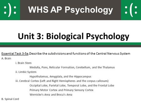 WHS AP Psychology Unit 3: Biological Psychology Essential Task 3-5a.Describe the subdivisions and functions of the Central Nervous System A. Brain i. Brain.