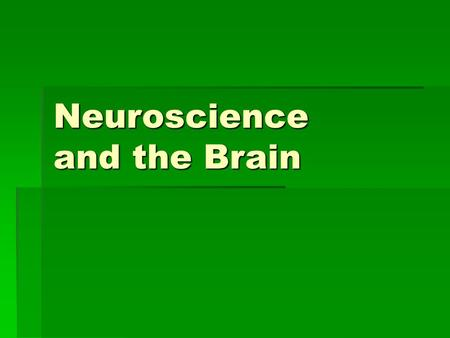 Neuroscience and the Brain. Cerebral Cortex and Hemispheres  Cerebral cortex: outermost layer of the brain  Spread out all the wrinkles-cerebral cortex.