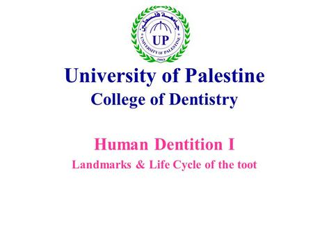 University of Palestine College of Dentistry Human Dentition I Landmarks & Life Cycle of the toot.