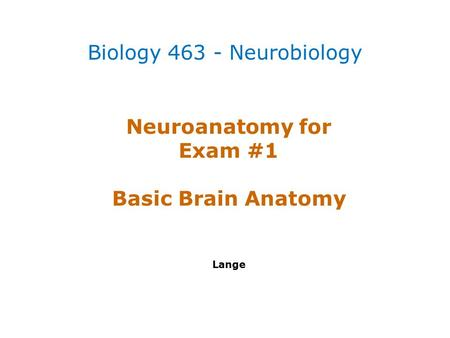 Neuroanatomy for Exam #1 Basic Brain Anatomy Lange Biology 463 - Neurobiology.