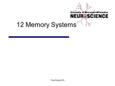 12 Memory Systems Psychology 355.
