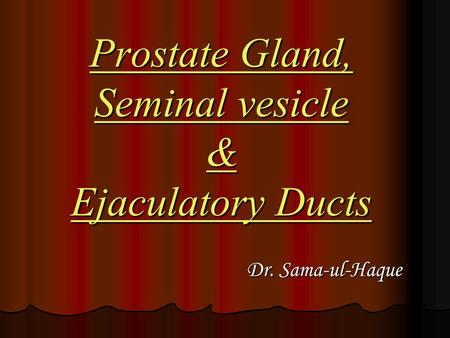Prostate Gland, Seminal vesicle & Ejaculatory Ducts Dr. Sama-ul-Haque Dr. Sama-ul-Haque.