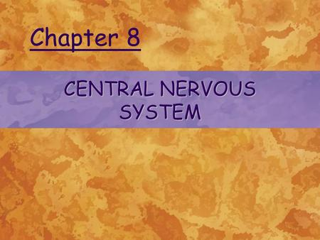 CENTRAL NERVOUS SYSTEM Chapter 8. ©2004 Delmar Learning, a division of Thomson Learning, Inc. INTRODUCTION TO THE CENTRAL NERVOUS SYSTEM Functions of.