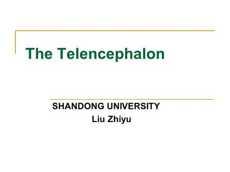 The Telencephalon SHANDONG UNIVERSITY Liu Zhiyu. General Appearance of Cerebrum The telencephalon consists of right and left cerebral hemisphere, partially.