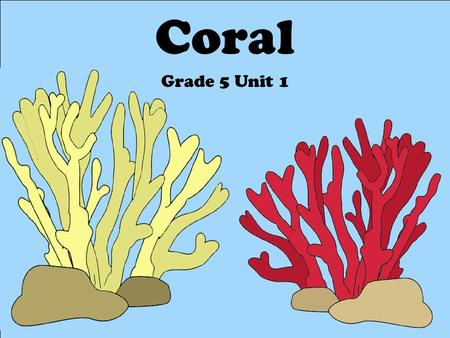 Coral Grade 5 Unit 1. Topics to be Covered… What is coral? How is coral classified? Coral biology Coral identification Coral conservation.