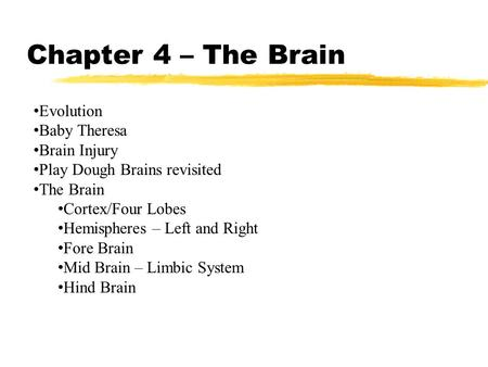 Chapter 4 – The Brain Evolution Baby Theresa Brain Injury Play Dough Brains revisited The Brain Cortex/Four Lobes Hemispheres – Left and Right Fore Brain.