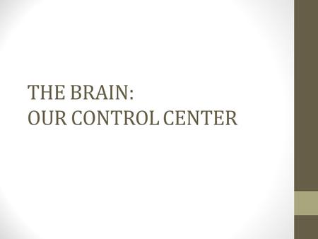 THE BRAIN: OUR CONTROL CENTER. Most left-brained people. The same hemisphere that contains most language functions also is usually more involved in logic,