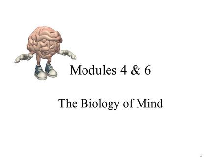 Modules 4 & 6 The Biology of Mind 1. Neuron - 100 Billion - Communication System.