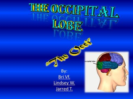 The Occipital Lobe is the rearmost lobe in each cerebral hemisphere of the brain. It contains the visual center of the brain. - It is one of the main.