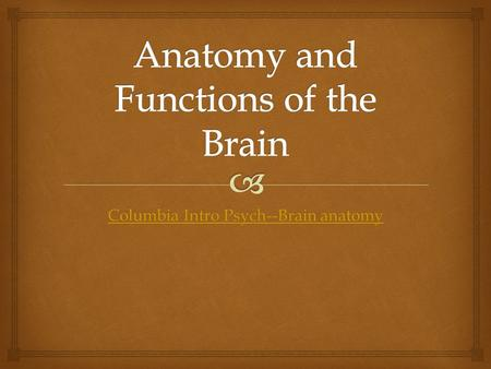 Columbia Intro Psych--Brain anatomy Columbia Intro Psych--Brain anatomy.