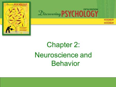 Chapter 2: Neuroscience and Behavior. Neurons and Synapses Types of Neurons SensoryMotor Interneurons.