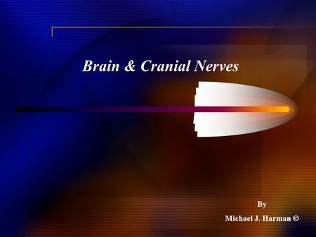 Brain & Cranial Nerves By Michael J. Harman .