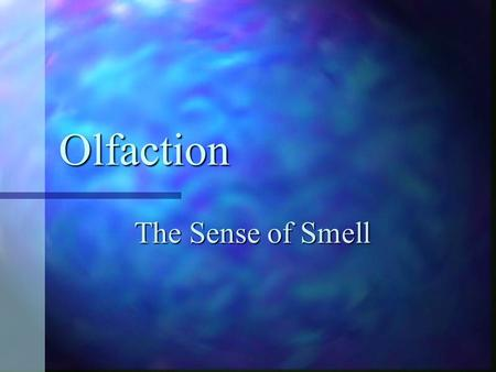 Olfaction The Sense of Smell.
