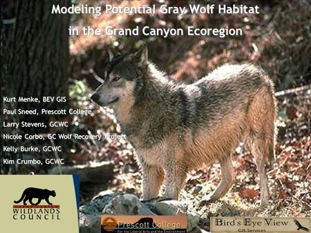 Modeling Potential Gray Wolf Habitat in the Grand Canyon Ecoregion Kurt Menke, BEV GIS Paul Sneed, Prescott College Larry Stevens, GCWC Nicole Corbo, GC.