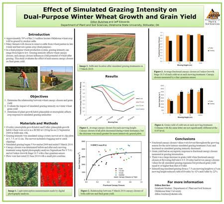 Results Effect of Simulated Grazing Intensity on Dual-Purpose Winter Wheat Growth and Grain Yield Dillon Butchee and Jeff Edwards Department of Plant and.