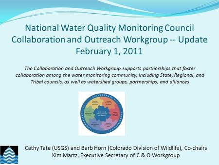 National Water Quality Monitoring Council Collaboration and Outreach Workgroup -- Update February 1, 2011 Cathy Tate (USGS) and Barb Horn (Colorado Division.
