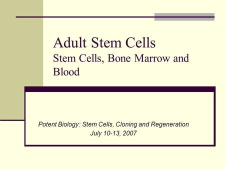 Adult Stem Cells Stem Cells, Bone Marrow and Blood Potent Biology: Stem Cells, Cloning and Regeneration July 10-13, 2007.