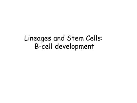Lineages and Stem Cells: B-cell development. The Circulatory System The circulatory system consists of the heart (to pump blood),the blood vessels (to.