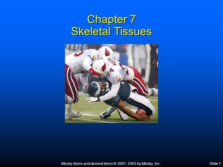 Mosby items and derived items © 2007, 2003 by Mosby, Inc.Slide 1 Chapter 7 Skeletal Tissues.
