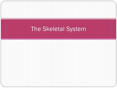 The Skeletal System. Functions It protects our vital organs such as the brain, heart, and lungs It gives us the shape that we have, without it we would.